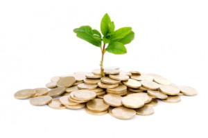 Coins and plant, isolated on white background